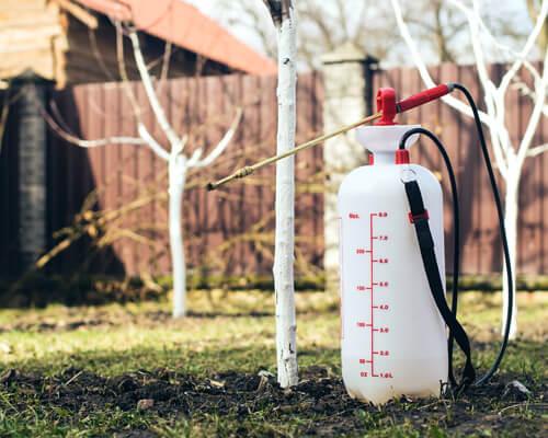 Pest service pesticide spray bottle