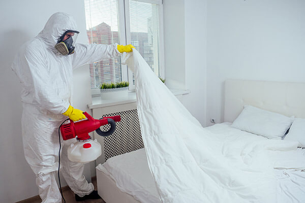 sanitizing hotel bed to kill covid-19 and bedbugs