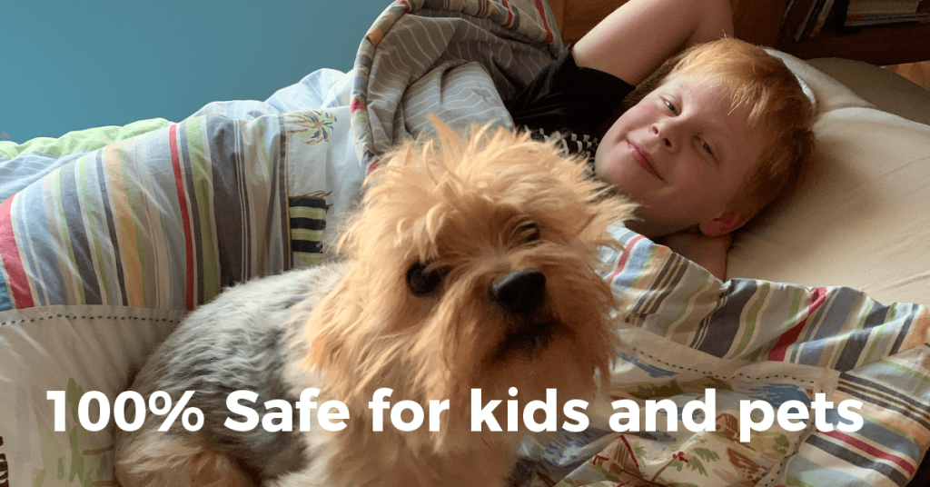 Our Sanitizing and Disinfecting Service is Safe for Kids and Pets
